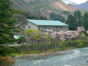 【川向うからの外観(春)】春には桜に囲まれる水明荘