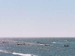 雄大な景色の太平洋