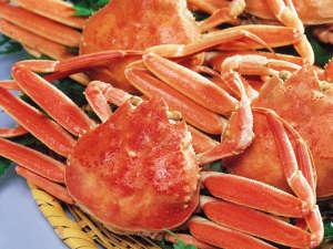 新鮮な生きのいい蟹を召し上がっていただくために当日仕入れにこだわっています。