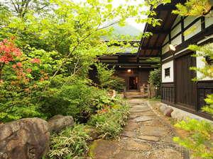 初夏の彩り 草円(そうえん)の玄関新緑の空気がおいしい。