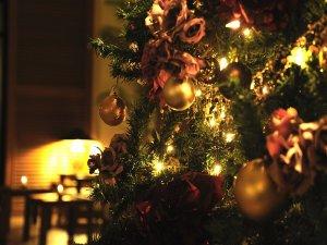こころはずむクリスマスタイムを南の楽園で。