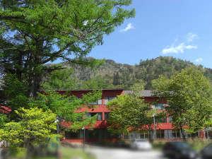 新緑の頃の小西ホテル外観