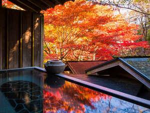 貸切風呂の一例(秋-03)
