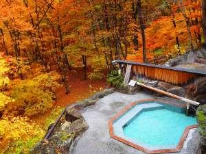 【源泉かけ流し】紅葉の露天風呂