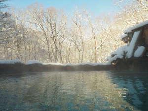 【源泉かけながし】雪見露天風呂 ご婦人大浴場「森のせせらぎ」