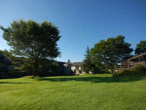緑の芝生のガーデンと大きなケヤキのシンボルツリー