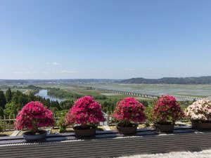 盆栽の合間から見える田園風景は格別です。