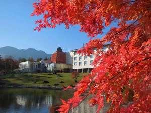 10月中旬頃は紅葉が見頃を迎えるころです!