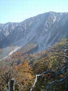 秀峰大山の紅葉。みごとです。