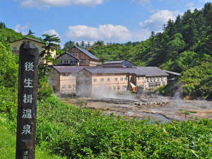 【夏の外観】緑に囲まれた湯けむり漂う後生掛温泉