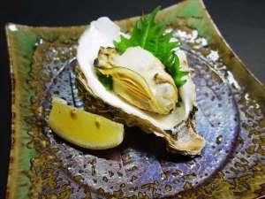 鳥取の夏の味覚・ブランド岩牡蠣「夏輝」が解禁となりました!※当館では焼いてお出ししております