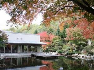 秋の中庭の眺めです。近代和風の趣