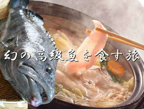 冬の風物詩。クエ鍋。コラーゲンたっぷりの美味魚♪