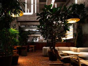 【 the LOUNGE 】緑に包まれ自然味あふれる店内で、思い思いの時間をお過ごしください