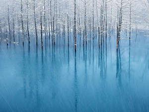 「てふてふ」の写真家が撮影した「青い池」が、日本人で初めてアップル社と独占契約!
