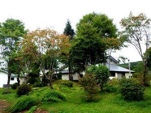 *【中庭】四季折々の植物を眺めながらお散歩をどうぞ。