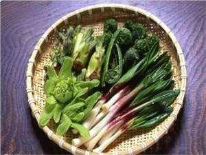 山の幸山菜各種