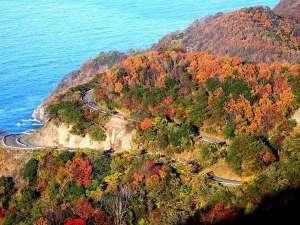 レインボーラインの紅葉◇10月下旬~11月中旬が見ごろです。