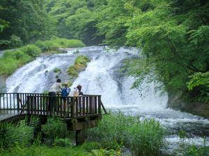 釜淵の滝まで散策に出かけよう!