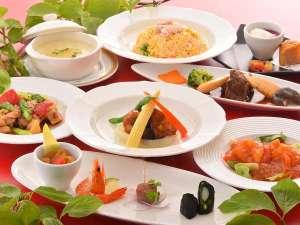 中華初夏のコース料理B