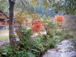 別荘前の綺麗な川です。春にはカジカ蛙、夏はホタル、岩魚もいます