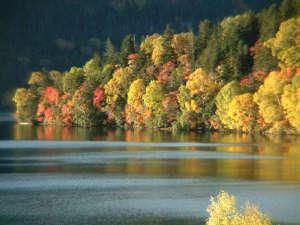 紅葉が美しい秋の然別湖