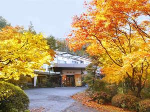 紅葉に彩られた四季の宿。(例年では10月下旬-11月中旬に見ごろを迎えます。)