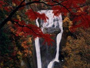 【袋田の滝】紅葉美しき秋の滝