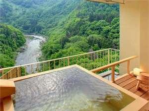 露天風呂付客室(和洋室)浴槽からの初夏の眺め