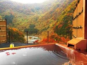 露天風呂付客室(和室)からの紅葉の眺め