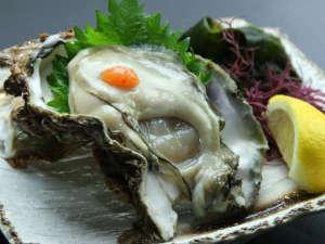 浜坂の岩牡蠣を一度食べると病みつきに・・・毎年食べたくなっちゃいますよ♪