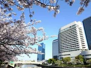 桜の名所大阪城公園はホテルのすぐ目の前