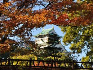 大阪城公園の紅葉を見にお出かけください