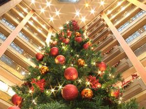 秀峰館の吹き抜けロビーには大きなクリスマスツリー☆