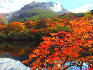 【いよいよ紅葉シーズン】姥ヶ平/ひょうたん池◆