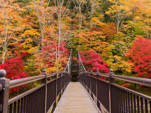 【紅葉】紅の吊り橋◆那須塩原