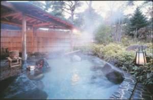 野趣溢れる露天風呂