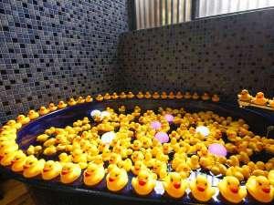 お部屋のバスをアヒルちゃん&光るジェリーフィッシュ風呂に♪記念日にいかが?無料で貸し出し。