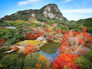 当館が所有する鍋島藩ゆかりの庭園『御船山楽園』。その15万坪の庭園を赤く染めるモミジ郡。