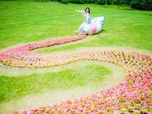 【初夏のおすすめ】芝生の広場に絵具花壇が登場!2019年度は6/30まで予定。