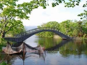 太鼓橋を渡って散策路の美しい景色を楽しむ