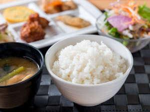 【健康朝食】鳥取のの環境王国で育てられた自然に優しい特別栽培米コシヒカリ
