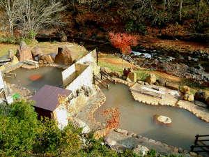 岩肌が風情あり季節の移り変わりを全身で感じることが出来る大露天風呂。