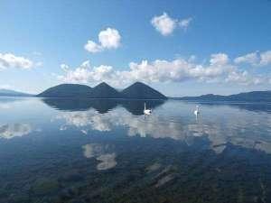 【夏】湖面に映る中島と白鳥。時間がとまったかのような景色はまるで絵画。