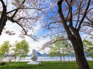 【春】晴天の下、満開の桜と新緑の木々が美しい洞爺湖畔(桜の見頃は例年5月上旬~中旬)