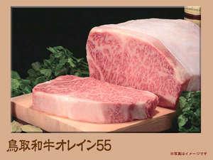 脂肪分にオレイン酸が55%以上含まれるという「鳥取和牛オレイン55」