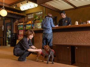 動物好きで経験豊かなスタッフが ペットちゃんとの快適な旅をお手伝いします。