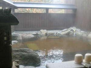 希少なモール温泉に浸かって…つるつるとした感触でお肌になじみます。湯上りポカポカ