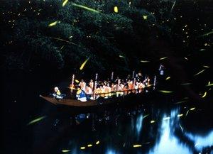 日本初のホタル舟。無数の光に包まれて、幻想的な美しさ