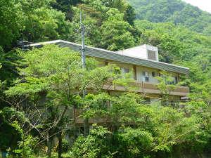 自然休養村センター(公共の宿) [ 香川県 高松市 ]  塩江温泉郷